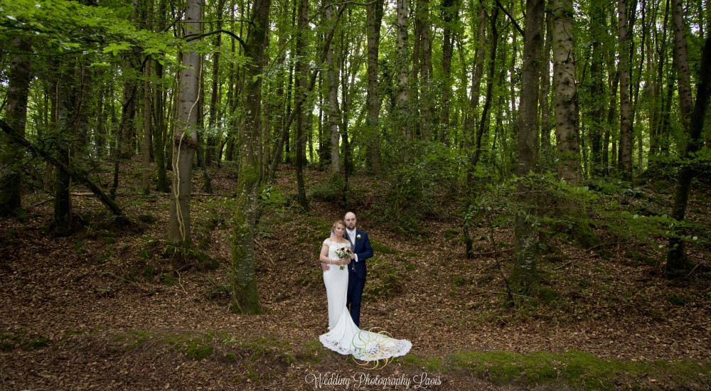 Wedding Photos at Heywood Gardens, Co. Laois